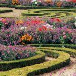 Imágenes de jardines