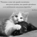 imagenes de amor con frases