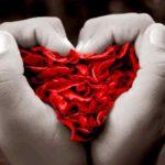 Imágenes de amores
