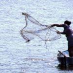 Imágenes de personas pescando