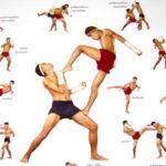 Imágenes de kick boxing