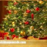 Imágenes de Felices Fiestas