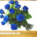 Imágenes de flores animadas