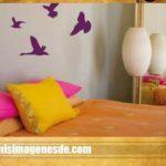 Imágenes de vinilos decorativos