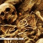 Imágenes de esqueletos