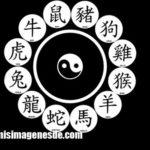 Imágenes de letras chinas