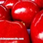 Imágenes de color rojo