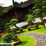 Imágenes de decoración de jardines