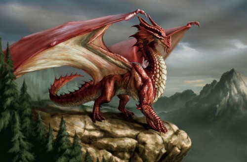 fotos de dragones