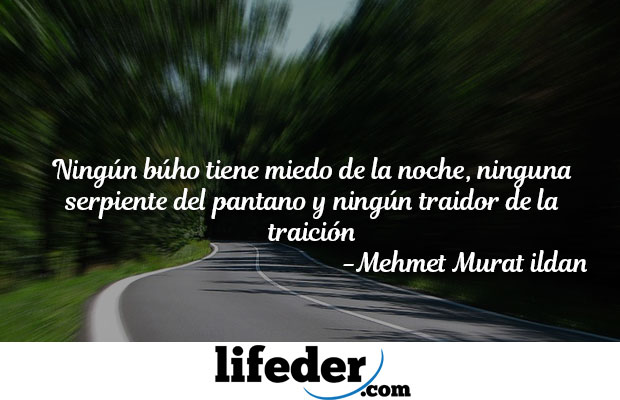 frases de traicion