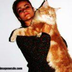 Imágenes de gatos gigantes