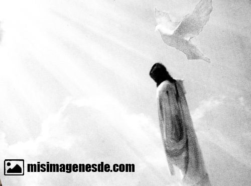 imagenes catolicas