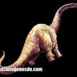 Imágenes de dinosaurios