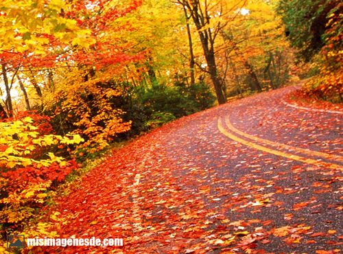 imagenes de otoño