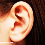 Imágenes del oído
