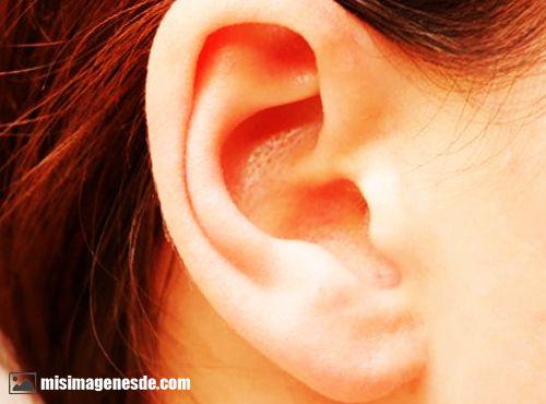 imagenes del oido