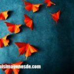 Imágenes de mariposas de papel