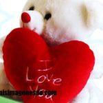 Imágenes de ositos de amor