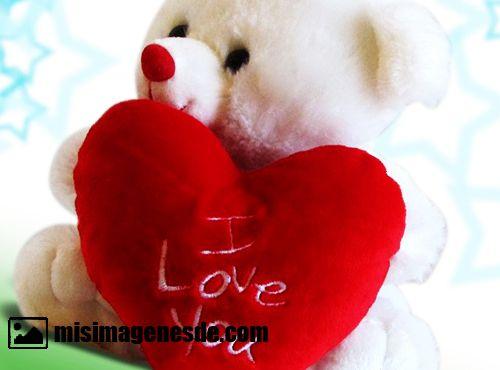 ositos de amor