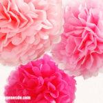 Imágenes de pompones