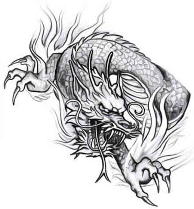 Im genes de tatuajes dise os im genes for Calavera lobo