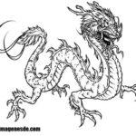 Imágenes de dibujos de dragones
