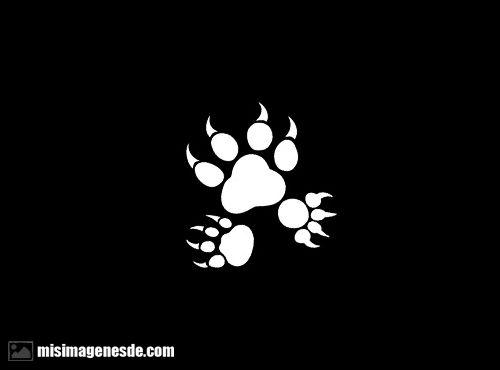 huellas de perrito