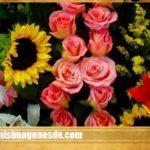 Imágenes de arreglos florales