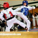 Imágenes de taekwondo