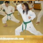 Imágenes de Karate