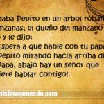 Imágenes de chistes de Pepito
