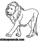 Imágenes de dibujos de animales
