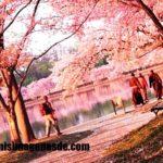 Imágenes de fotos de paisajes