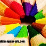 Imágenes de paleta de colores
