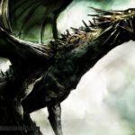 Imágenes de fotos de dragones