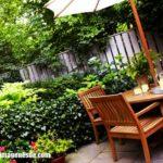 Imágenes de jardines pequeños